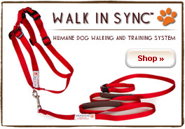 Walk In Sync™ Sport Harness and Accu-Grip Leash - Red