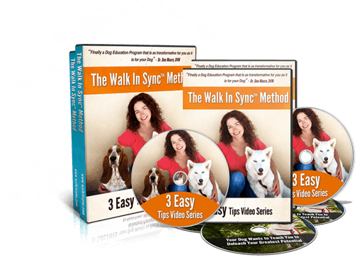 Walk In Sync™ Method 3 Easy Tips Video Series Bonuses